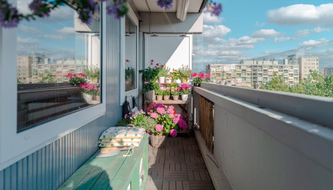 Idee für einen schmalen Balkon mit bemalter Holzbank & Pflanzregal - Blumentöpfe mit rosa Hortensien & weiteren blühenden Blumen - Kissen auf der Bank