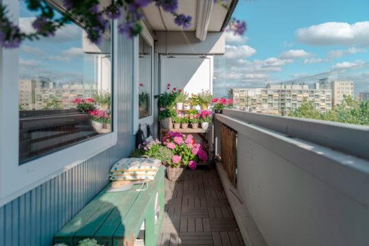 Idee für einen schmalen Balkon mit bemalter Holzbank & Pflanzregal – Blumentöpfe mit rosa...