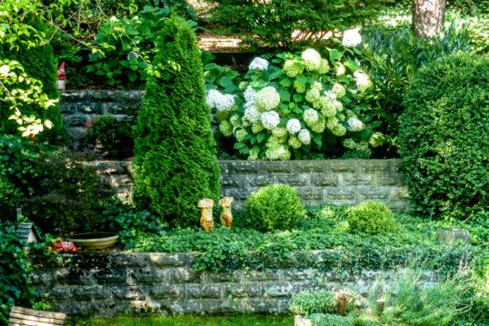 Idee für die Gestaltung des Gartens – Stufenbeete mit Gartenpflanzen  Hortens...
