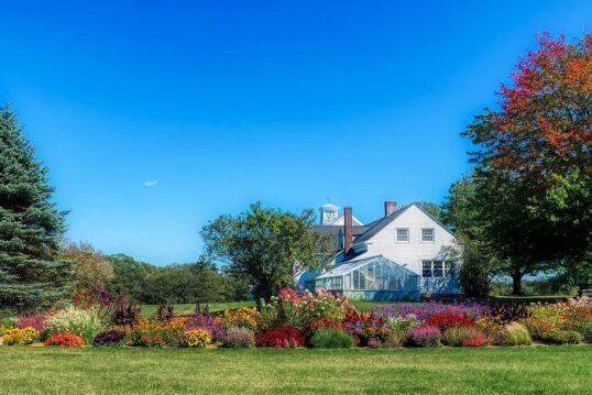 Gartengestaltung - Ideen & Beispiele zum Planen & Gestalten