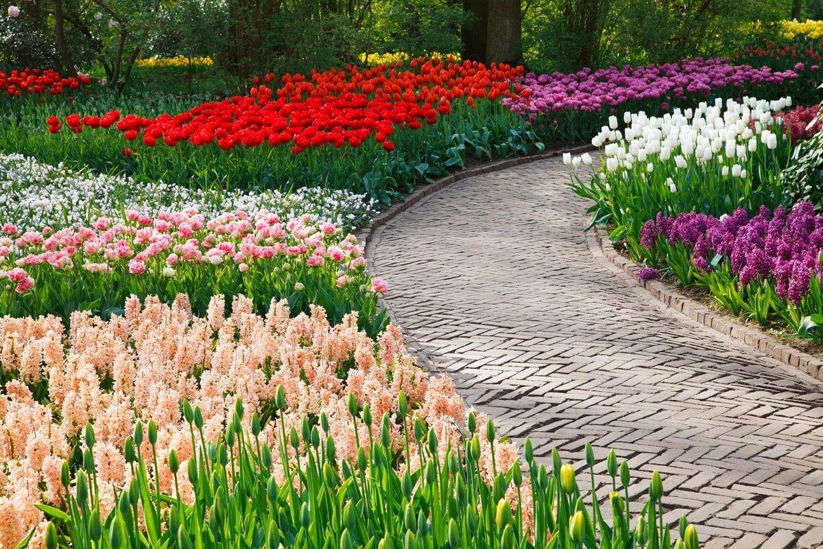 Denke bei der Planung deiner Gartengestaltung auch an feste Gartenwege, um Trampelpfade zu vermeiden.