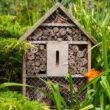 Nisthilfen & Insektenhotels