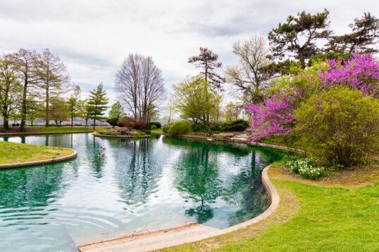 Gepflegter Schwimmteich mit Steinumrandung – Beispiel mit einem Natur Pool in...