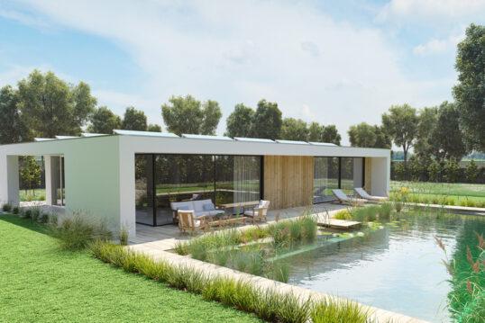 Beispiel für die moderne Gartengestaltung – Großer Schwimmteich mit Pflanzen ...