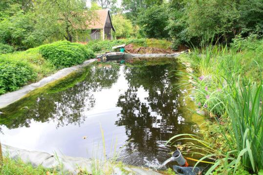 Natur Pur – Schwimmteich Idee mit Teichpumpe & Filteranlage in natürlich...