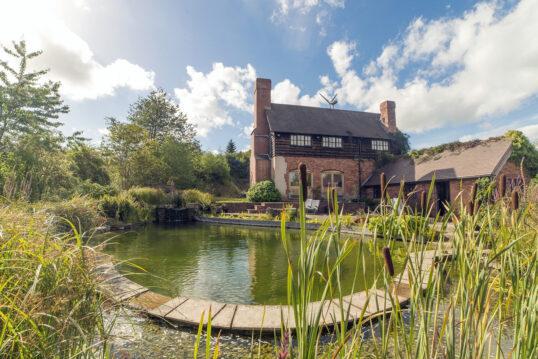 Schwimmteich im Garten mit Steinplatten als Umrandung – Schilf am Uferrand &#...