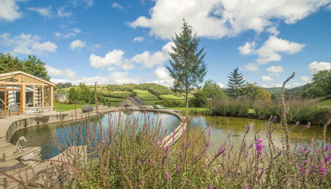 Schwimmteich in ländlicher Umgebung - Gartenhaus aus Holz auf der Terrasse neben dem Natur Pool - Gartenpflanzen & Sträucher