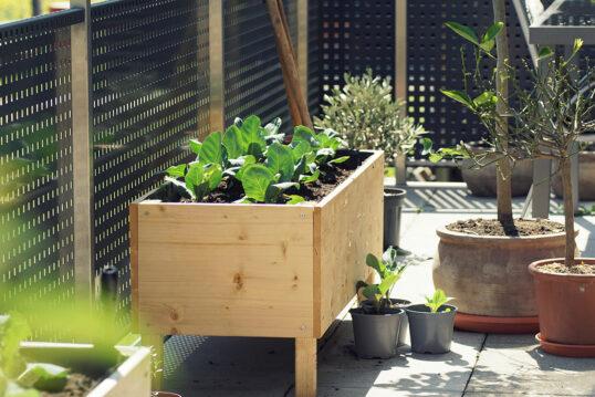 Terrasse oder Balkongestaltung – Hochbeet aus Holz – Große & klein...