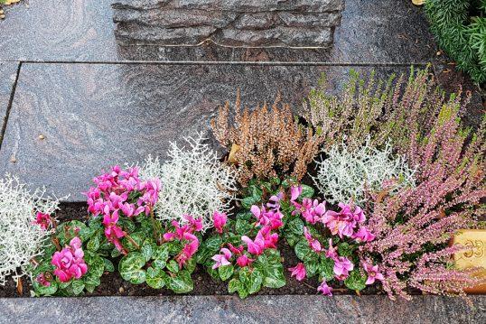 Grabgestaltung eines Urnengrabes aus Granit mit Abdeckplatte und pflegeleichter Bepflanzung für den Herbst
