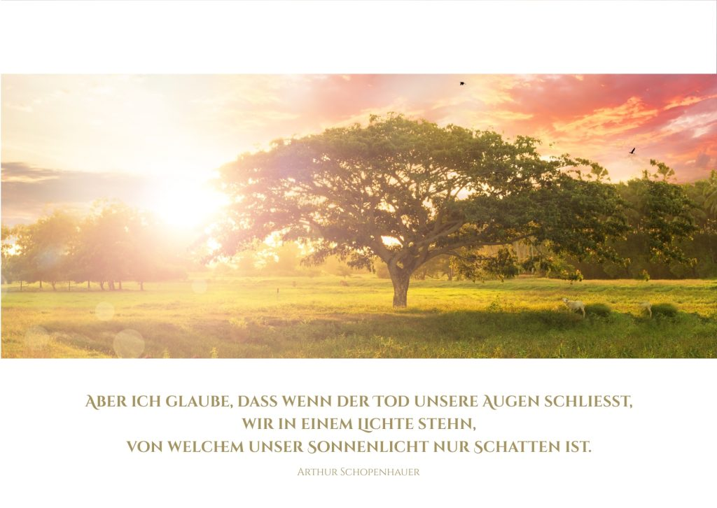 Schöne Trauerkarte mit einem stilvollen Baum Motiv & Trauerspruch