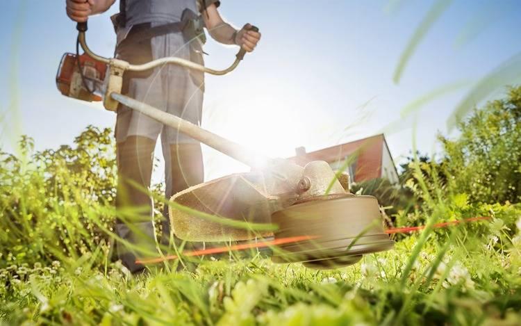 Mit Rasenkantenschneider zu sauber & gerade geschnittenen Rasenflächen und freien Wegen