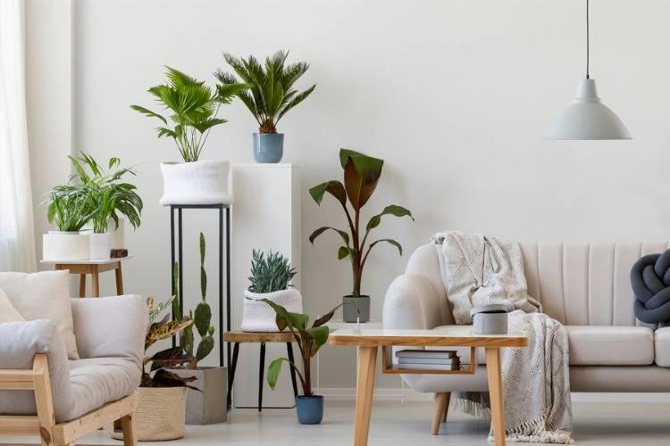 Blumentische: schicke Möbelstücke für Haus, Balkon und Terrasse