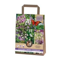 Paket Schmetterling Freundlich