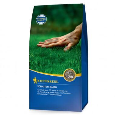 Schatten-Rasen, 1 kg