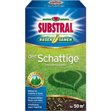 Substral Rasensamen der Schattige 1 kg, für 50 m²