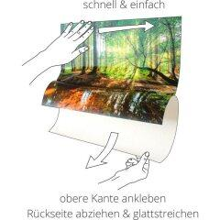 Garten Langzeit-Dünger, Compo, Faltschachtel, 2 kg