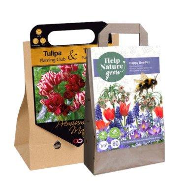 2x Blumenzwiebeln Geschenken Surprise pack 2