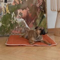 Hunde-Steppdecke Estera Größe: 120x100cm Farbe: weinrot