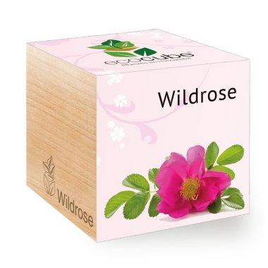 Wildrose im Holzwürfel