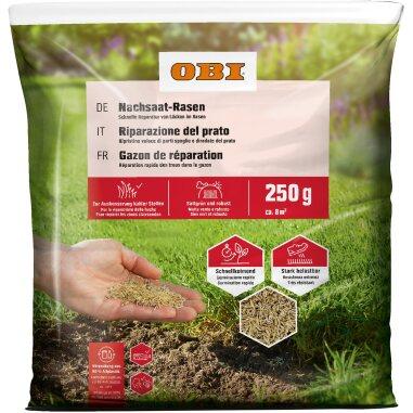 OBI Nachsaat-Rasen 250 g