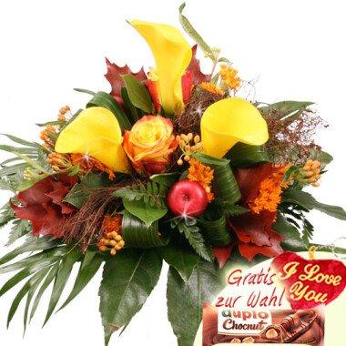 Elegance Farbenfeuer Herbstblumen-Special
