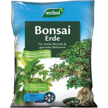 Westland Bonsaierde 4 l
