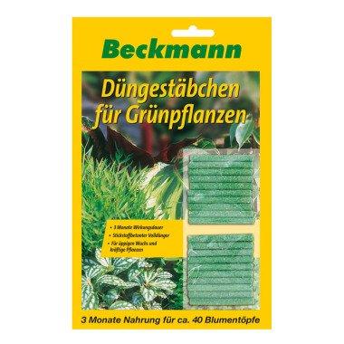 Düngestäbchen für Grünpflanzen 40er