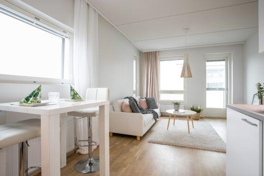Modern eingerichtetes 1 Raum Appartement – Wohnidee mit Tresentisch & Ba...