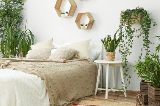 Schlafzimmer Idee im modernen Landhausstil mit Pflanzen & Wandregalen – ...